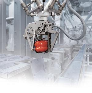 Robotic Automation Solutions
